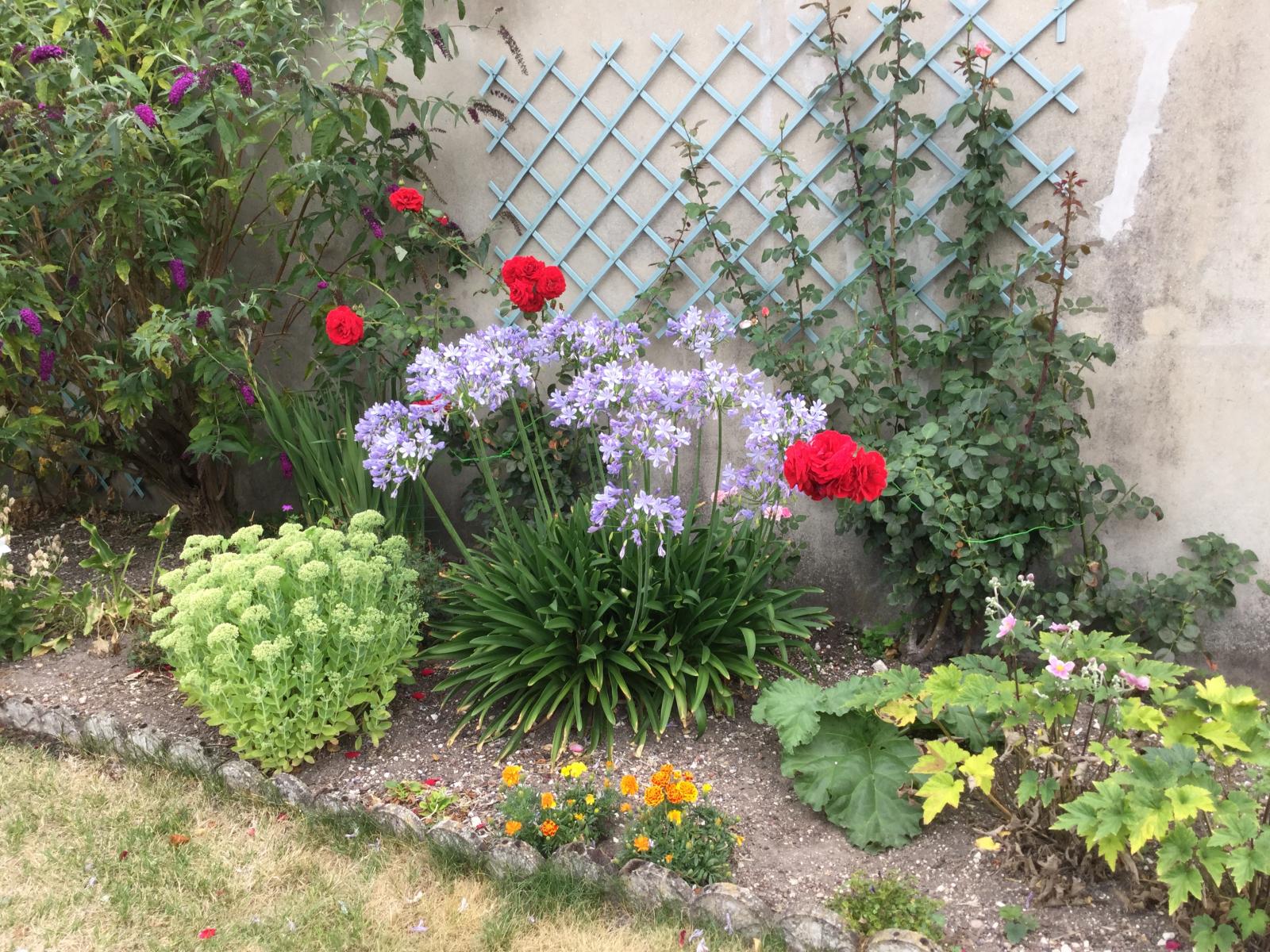 Unpeu-de-mon-jardin